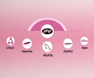 PHP MySQL Web Application Development
